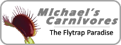 Michael's Carnivores