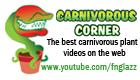 Carnivorous Corner