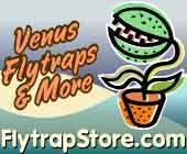 Flytrap Store