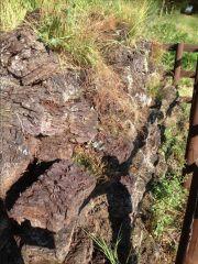 peat blocks