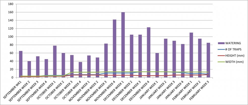 VFT #13 Growth Chart.jpg