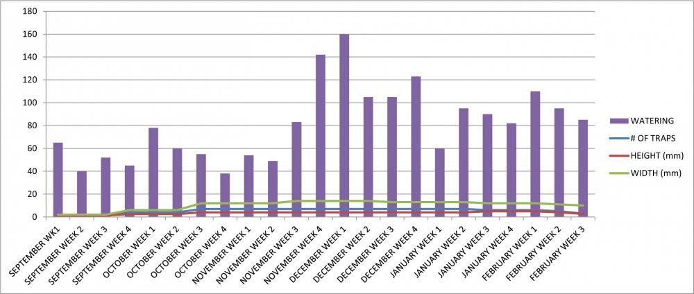 VFT #6 Growth Chart.jpg