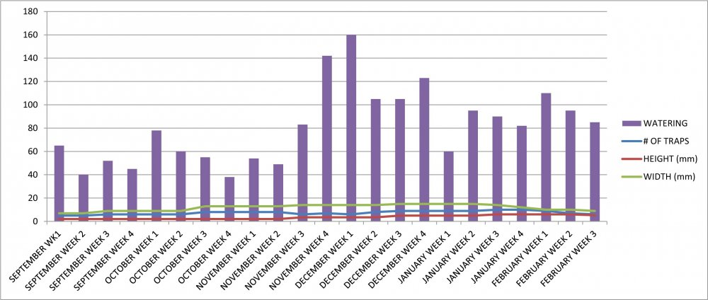 VFT #11 Growth Chart.jpg