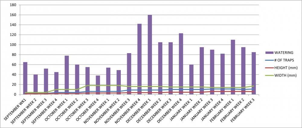 VFT #4 Growth Chart.jpg