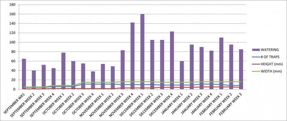 VFT #2 Growth Chart.jpg