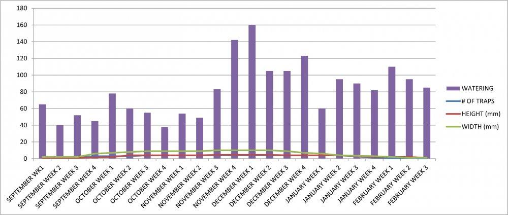 VFT #3 Growth Chart.jpg