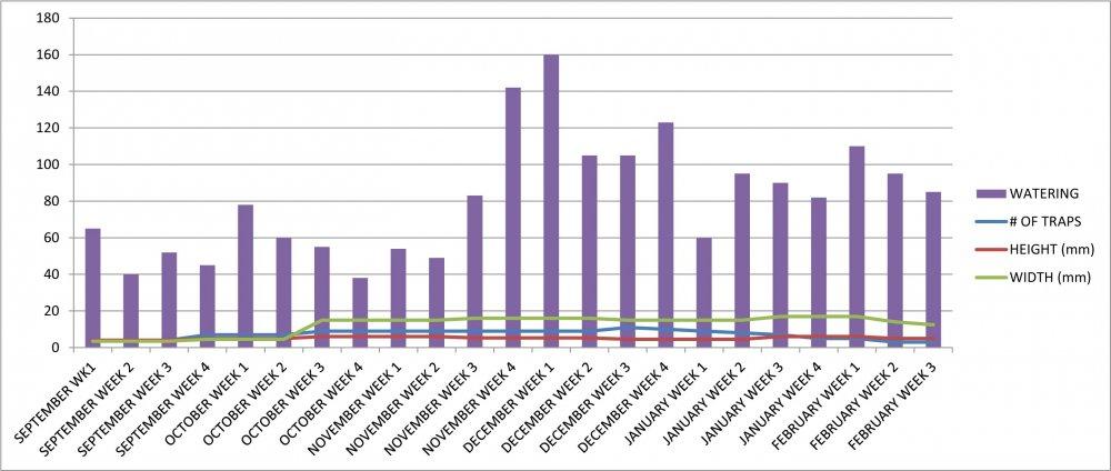 VFT #10 Growth Chart.jpg