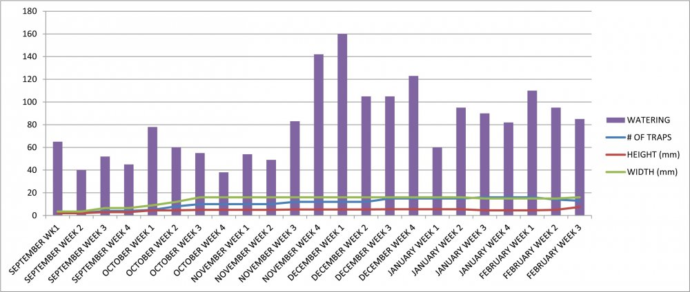 VFT #8 Growth Chart.jpg