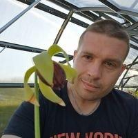Pelles Carnivorous Plants