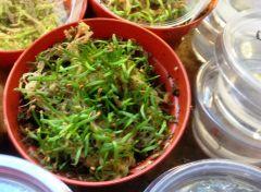 Sarra sprouts