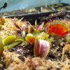 Dionaea spotty4.jpg